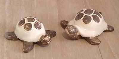 bestiole-tortue-eau